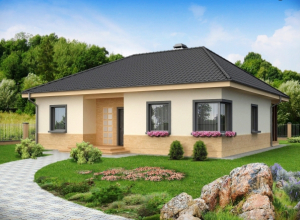 Проект дома-215